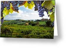 Vineyards In San Gimignano Italy Greeting Card by Susan Schmitz
