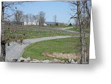 Vineyards In Va - 12122 Greeting Card by DC Photographer