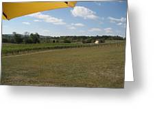 Vineyards In Va - 121249 Greeting Card by DC Photographer