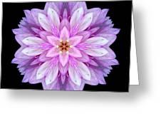 Violet Dahlia I Flower Mandala Greeting Card by David J Bookbinder