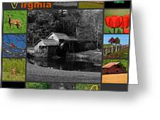Virginia Artist Logo Entry Greeting Card by Living Waters Photography