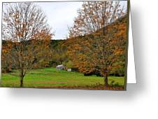 Virginia Fall Greeting Card by Todd Hostetter