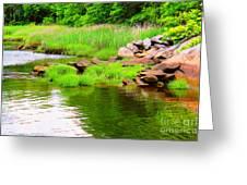 Visual Stillness Greeting Card by Judy Palkimas