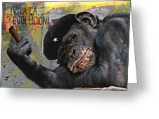 Viva La Evolucion Greeting Card by Joachim G Pinkawa