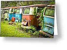 Vw Buses Greeting Card by Carolyn Marshall