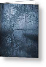 Waccasassa River Greeting Card by Phil Penne