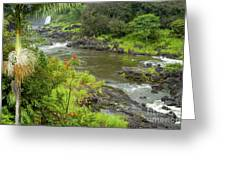 Wailuka River Greeting Card by Bob Phillips
