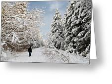 Walk In The Winterly Forest With Lots Of Snow Greeting Card by Matthias Hauser