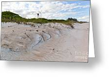 Walking In The Sand Greeting Card by Michelle Wiarda
