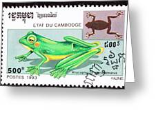 Wallace's Flying Frog Greeting Card by Jim Pruitt
