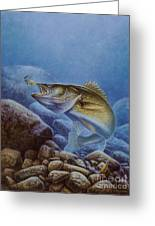 Walleye And Lindy Greeting Card by Jon Q Wright