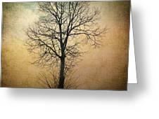 Waltz Of A Tree Greeting Card by Taylan Soyturk