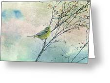 Warbler In A Huckleberry Bush Greeting Card by Peggy Collins