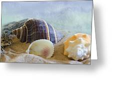 Washed Ashore Greeting Card by Betty LaRue