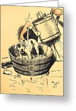 Washed By Mary - A Dog Day Collection 4 Of 27 Greeting Card by Cecil Aldin