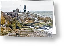 Washed Up Greeting Card by John Collins