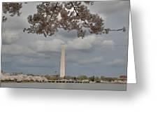Washington Monument - Cherry Blossoms - Washington Dc - 011330 Greeting Card by DC Photographer