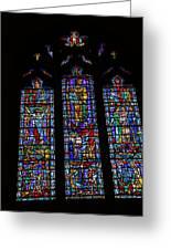 Washington National Cathedral - Washington Dc - 011313 Greeting Card by DC Photographer