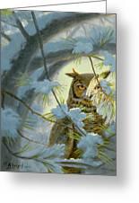 Watchful Eye-owl Greeting Card by Paul Krapf