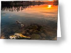 Watching sunset Greeting Card by Davorin Mance