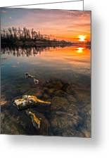 Watching Sunset Greeting Card by Davorin Mance
