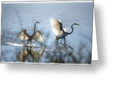 Water Ballet  Greeting Card by Saija  Lehtonen