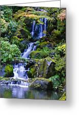 Water Fall Greeting Card by Dennis Reagan