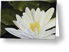 Water Lily Greeting Card by Joan Swanson