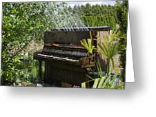 Water On My Piano Greeting Card by Irene  Theriau