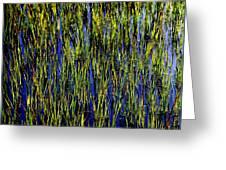 Water Reeds Greeting Card by Karen Wiles