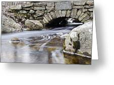Water Under The Bridge Greeting Card by Andrew Pacheco