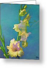 Watercolor Study Of My Garden Gladiolas Greeting Card by Douglas MooreZart
