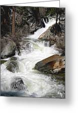Waterfall Along The Rubicon Trail - Lake Tahoe Greeting Card by Patricia Sanders