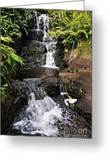 Waterfall And Stream Greeting Card by Sami Sarkis