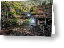 Waterfall At Parfrey's Glen Greeting Card by Jonah  Anderson