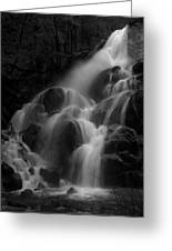 Waterfall In Black And White Greeting Card by Bill Gallagher