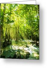 Waterfall In Rainforest Greeting Card by Atiketta Sangasaeng