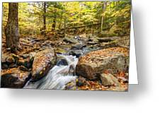 Waterfall In The Fall Nh Greeting Card by James Steele