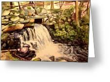 Waterfall Sharon Audubon 12x16 Greeting Card by Nicolas Bouteneff