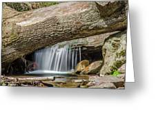 Waterfall Under Fallen Log Greeting Card by Jonah  Anderson