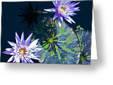 Waterlily And Pads Greeting Card by Debra     Vatalaro