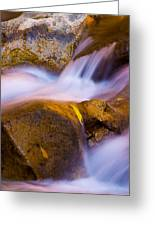 Waters Of Zion Greeting Card by Adam Romanowicz