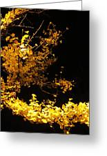 Wave Of Yellow Greeting Card by Guy Ricketts