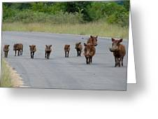 We Own The Road Greeting Card by Ramona Johnston