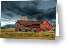 Weathering The Storm Greeting Card by Lori Deiter