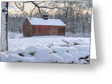 Weathering Winter Greeting Card by Bill Wakeley
