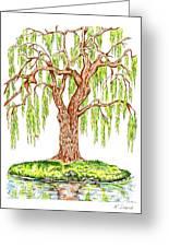 Weeping Willow Greeting Card by Karen Sirard