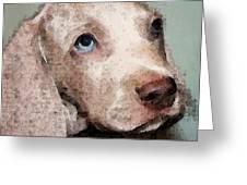 Weimaraner Dog Art - Forgive Me Greeting Card by Sharon Cummings