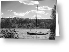 Wellesley College Waban Lake Greeting Card by University Icons