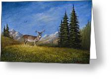 Western Whitetail Greeting Card by C Steele